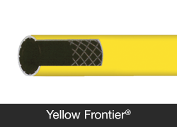 Frontier Yellow